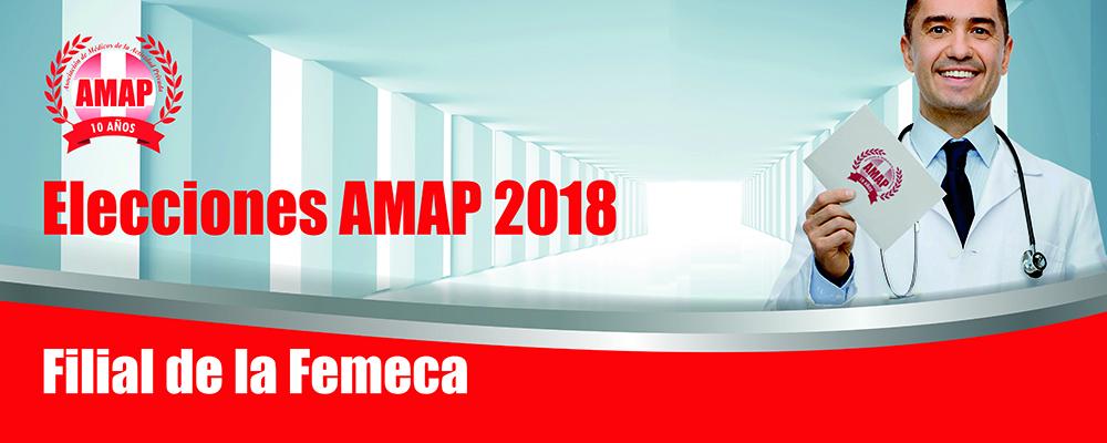 Elecciones en las filiales y seccionales de la AMAP